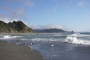 Orick California - photo copyright Michelle Rhea