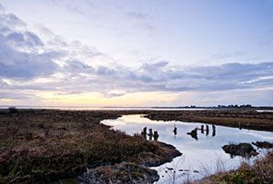 Humboldt Bay - photo copyright Humboldt State University